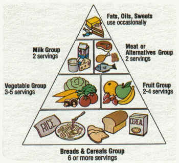 Chicago Fitness Trainers say don't use this food pyramid